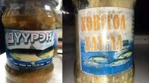 Хөвсгөлөөс шилэнд даршилсан загас авч идсэн 20 орчим хүн хорджээ