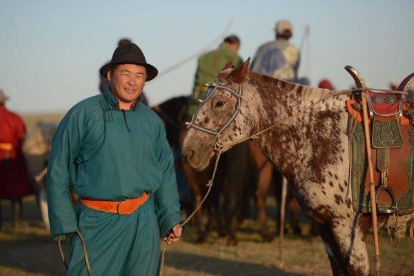 """Монголын  баялаг """"Морин аялал""""-ын  Э.Хишигбаяр"""